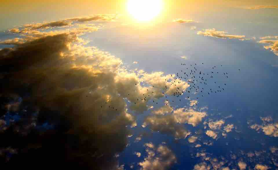摄理爱主情人节之神的爱如太阳炙热