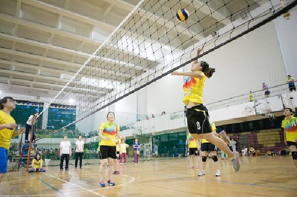 摄理CGM菁英杯排球赛_打排球