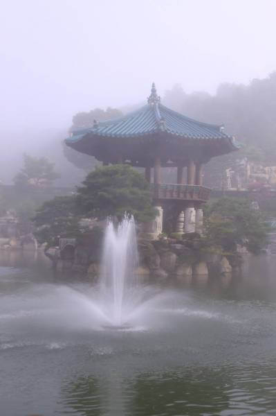干旱月明洞下雨_月明湖