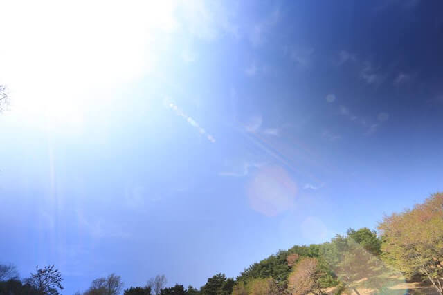 摄理新闻_郑明析牧师首尔传道_月明洞天空