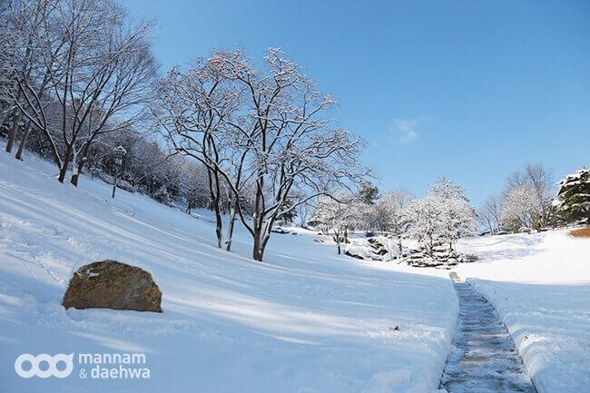 摄理月明洞_阳光草坪雪景