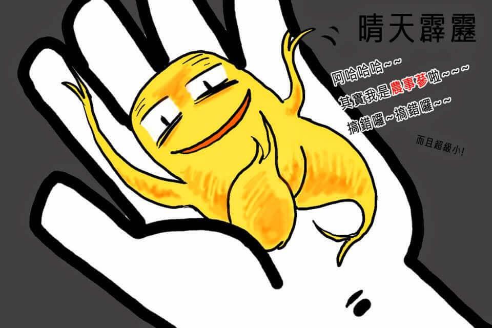 摄理漫画_人参的故事5